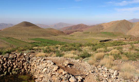 Berber crop terraces, High Atlas mountains, Morocco