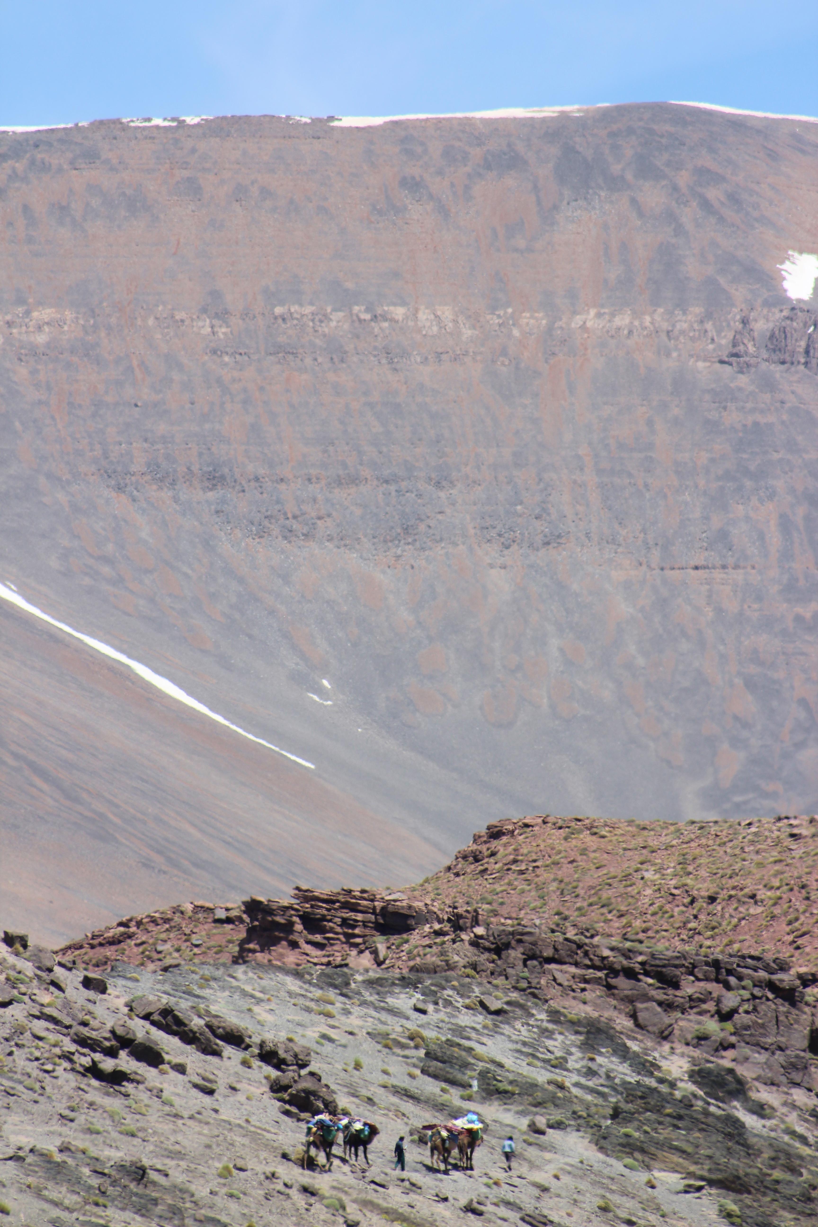 Camel train against a backdrop of Jebel M'goun, High Atlas Mountains, Morocco