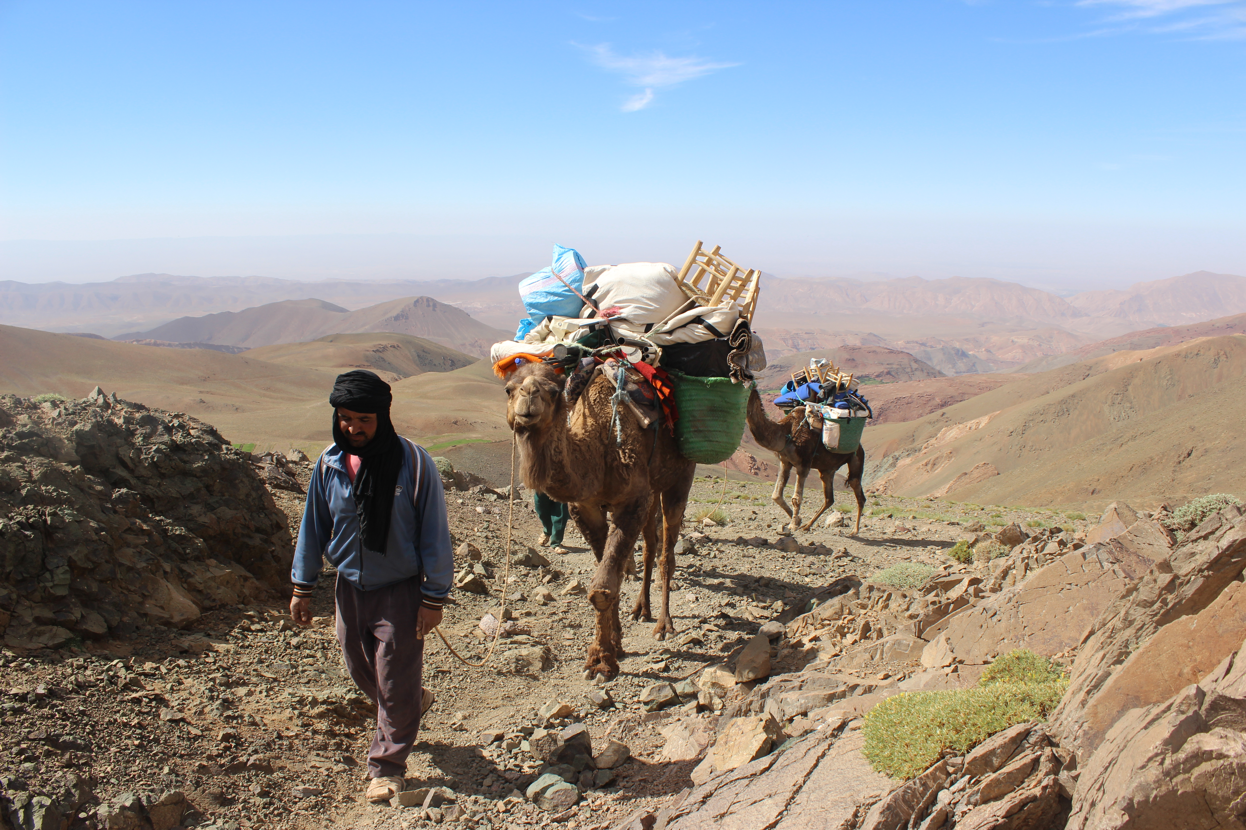 Camels lead the way into the M'goun massif, High Atlas mountains, Morocco